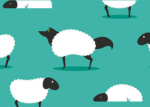 5 dicas para deixar seu e-commerce mais protegido das fraudes